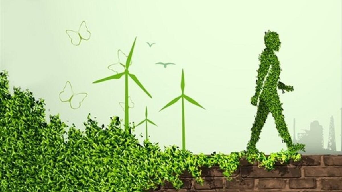 Yenilenebilirde enerji teşvik miktarı 38 milyar lirayı aştı