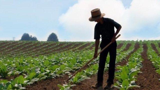 https://ekonomigercekleri.com/wp-content/uploads/2020/04/çiftçilere-müjde-640x360.jpg