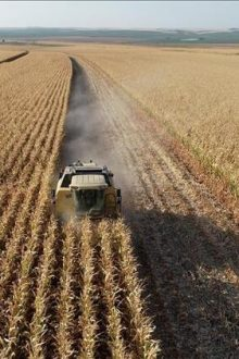Has the agricultural production failed in turkey?