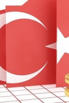 Türkiye likit destekle G20 devlerini geride bıraktı