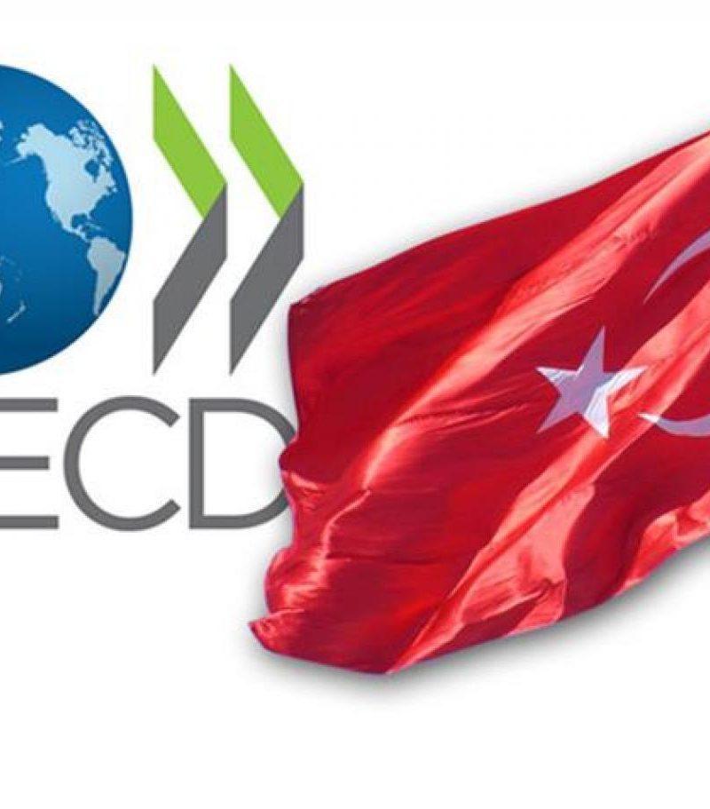 OECD Türkiye için tahminlerini yükseltti